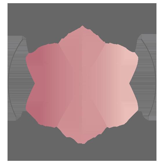 Shazmins Petite Patisserie